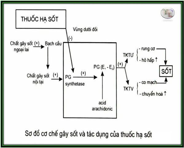 thuoc-giam-dau-khong-steroid-2